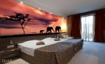 Willkommen in Afrika